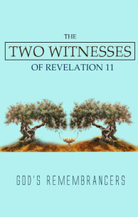 The Two Witnesses of Revelation 11