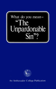 What Do You Mean - The Unpardonable Sin