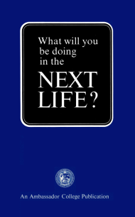 What Will You Be Doing In The Next Life